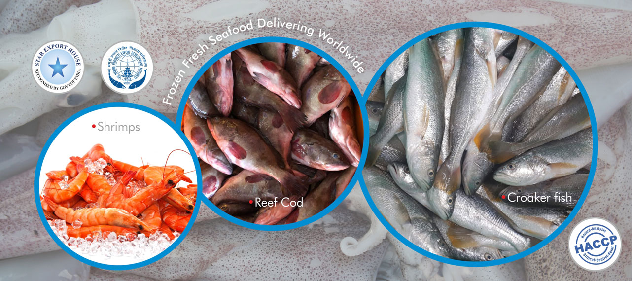 Tolar Ocean Products - Frozen Fresh Seafood Delivering Worldwide